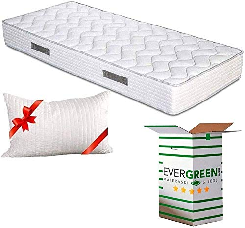 EVERGREENWEB - Materasso Singolo 90x200 in Waterfoam alto 20 cm con CUSCINO Memory Foam GRATIS,...