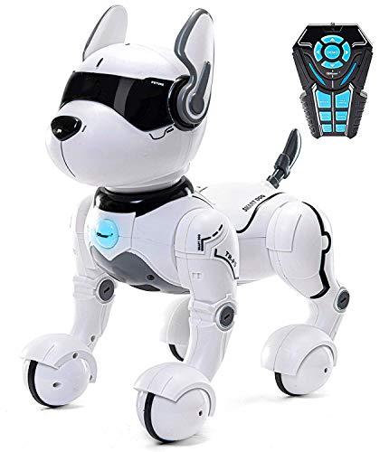 Cane Robot telecomandato